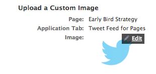 custom-image