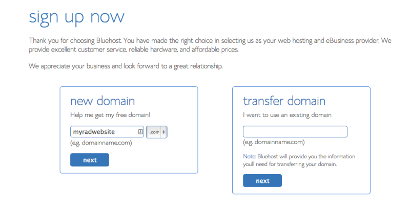 Bluehost Signup 1